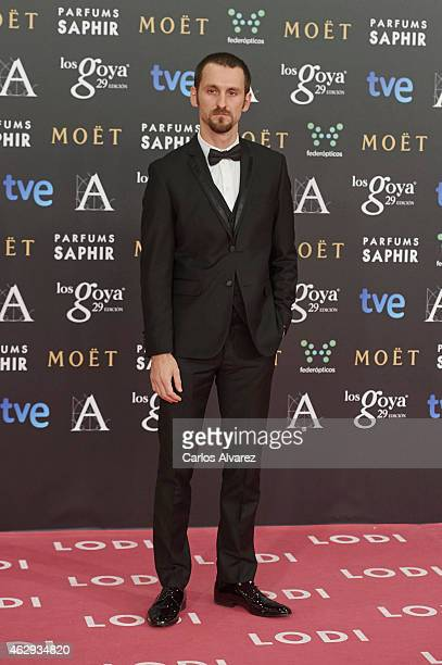 Raul Arevalo attends Goya Cinema Awards 2014 at Centro de Congresos Principe Felipe on February 7 2015 in Madrid Spain