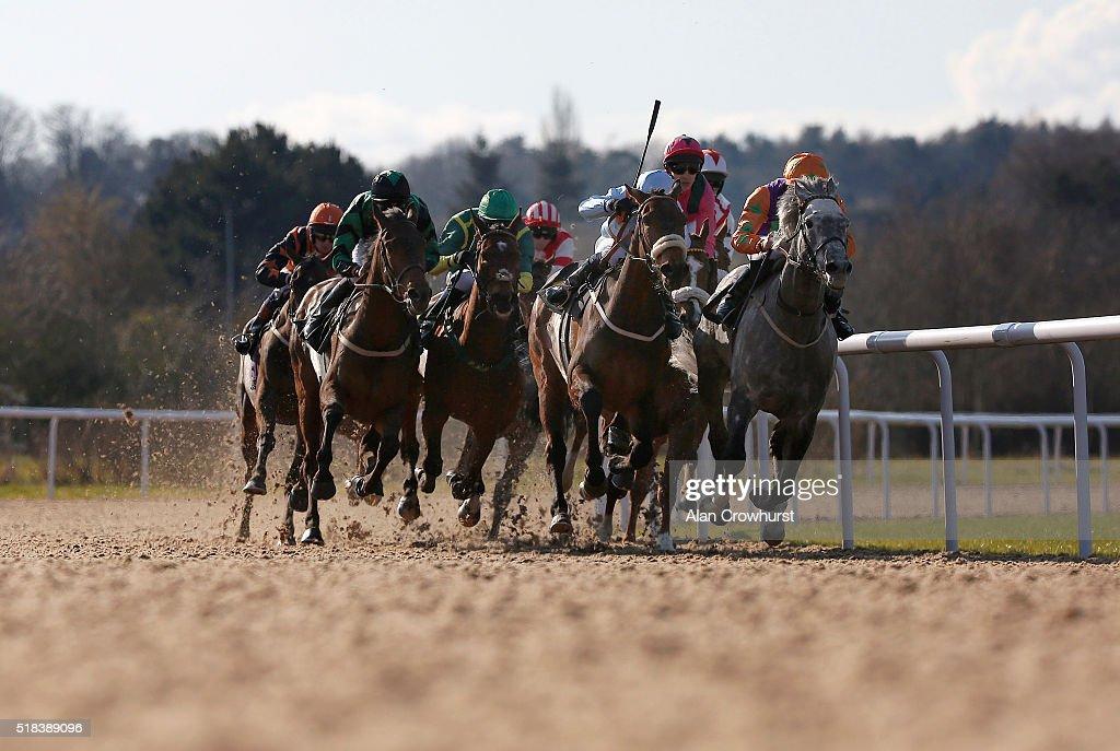 Raul Da Silva riding Whisky Marmalade win The Find Us On Facebook Wolverhampton Racecourse Handicap Stakes at Wolverhampton racecourse on March 31...