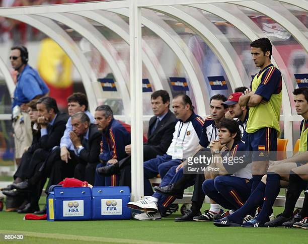 Raul of Spain looks on dejected from the substitutes bench during the FIFA World Cup Finals 2002 Quarter Finals match between Spain and South Korea...