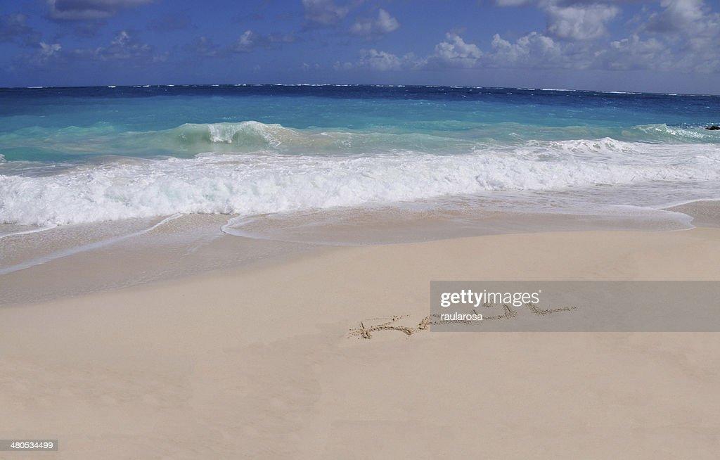 Raul auf sand : Stock-Foto