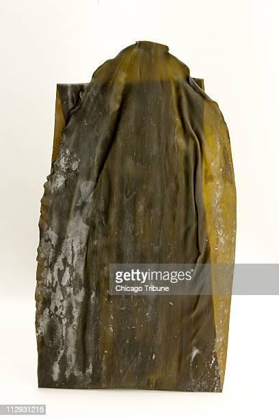Rausu kombu kelp which has a meaty flavor can be used in miso soup or like bay leaves as a seasoning in stews