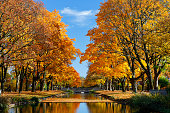 Lindenthal channel - part of the public Cologne town forest in autumn.
