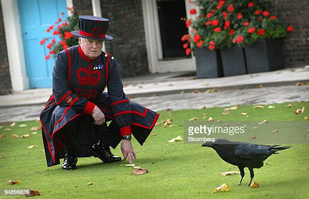 'Ravenmaster' Derrick Coyle watches one of the ravens at the Tower of London Thursday October 20 2005 Derrick Coyle the Tower of London's ravenmaster...
