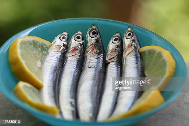 Raw Anchovies on Lemon Slices