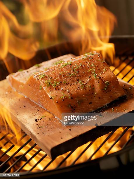 Raw Cedar Plank Salmon Fillet on an outdoor BBQ