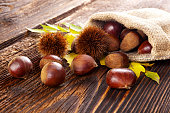 Autumn edible chestnuts in burlap bag on wooden rustic table. Fall background.