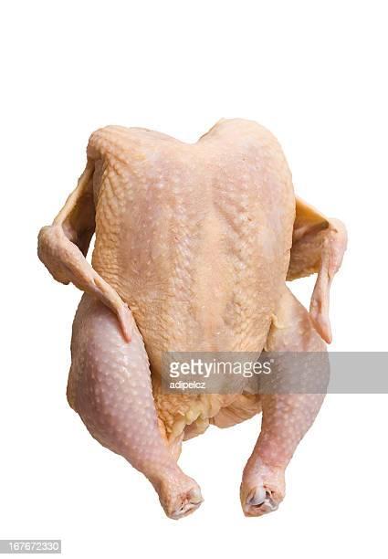 Raw chicken on white