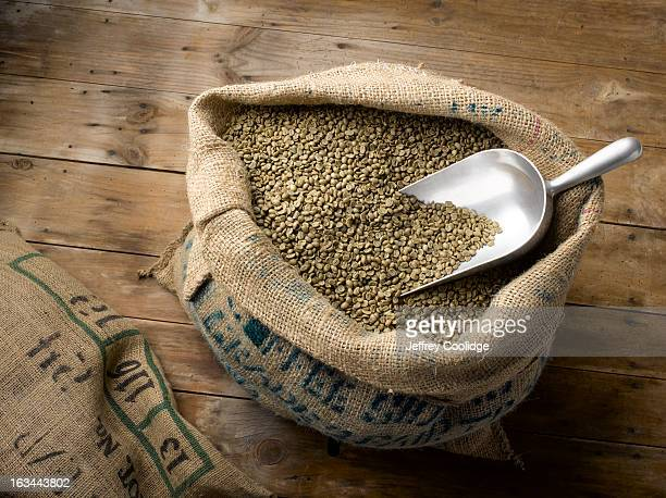 Raw Coffee Beans in Burlap Bag
