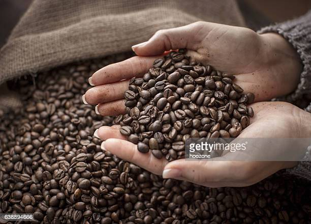 Raw Coffee