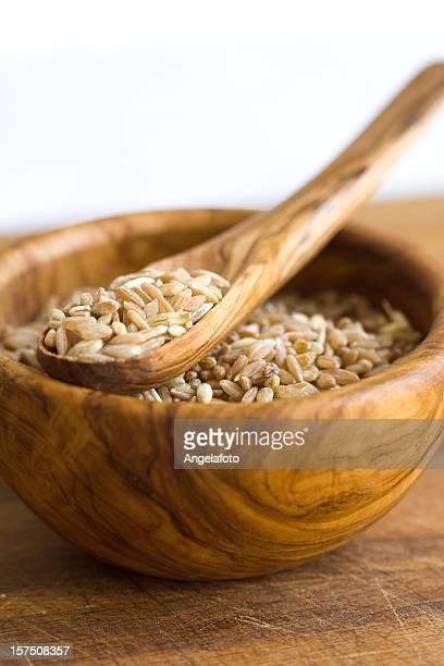 Raw Farro cereali in una ciotola e un cucchiaio di legno d'Ulivo