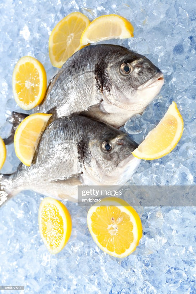 raw fish ice : Stock Photo
