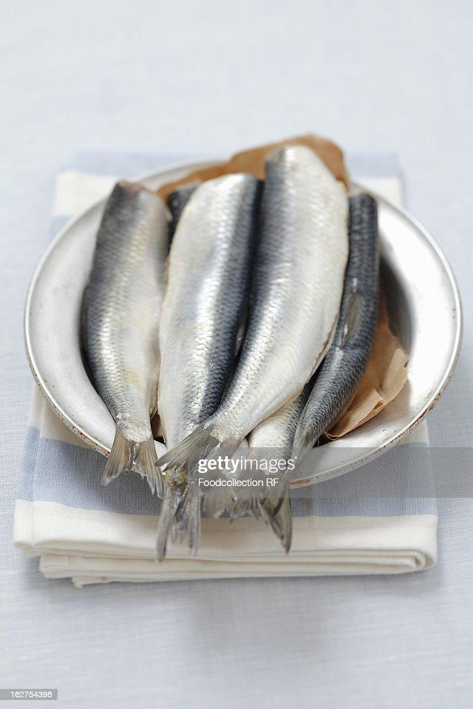Raw herring fish in plate