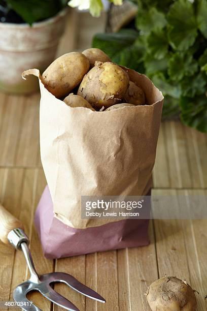 Raw potatoes in brown paper bag