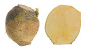 Closeup of raw rutabaga, whole and cut root isolated on white background.