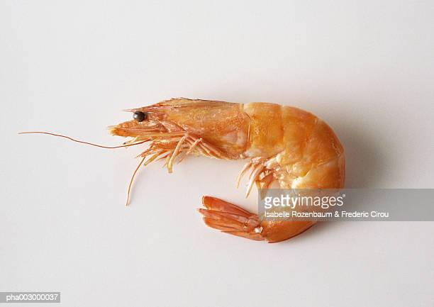 Raw shrimp, side view, close-up