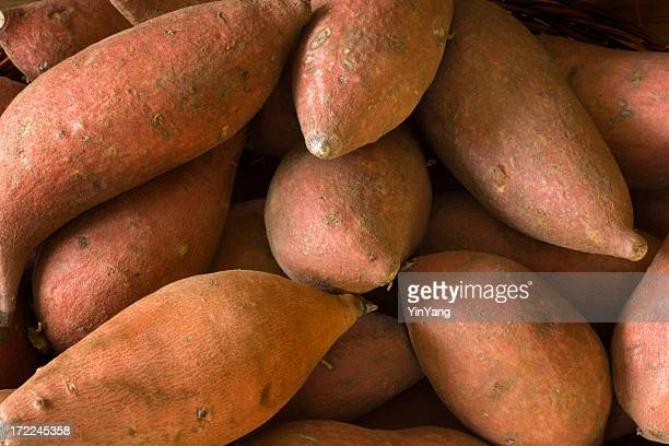 Raw  Whole Sweet Potatoes Yams, Fresh Healthy Root Vegetable