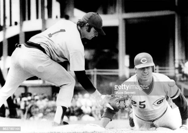 Ray Knight of the Cincinnati Reds is safe at first after a pickoff as Jim Dwyer of the Boston Red Sox applies the tag during an MLB Spring Training...