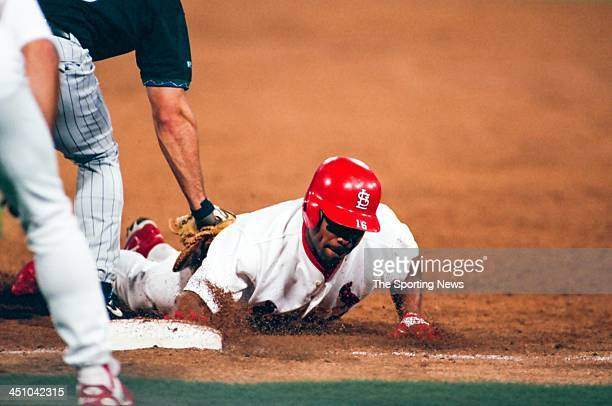 Ray Lankford Of The St Louis Cardinals During The Game Against The Picture Id S X on Ray Lankford St Louis Cardinals
