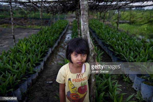 Raya stands infront of a plantation zone where younger palm trees are nursed until they are ready to be relocated into the larger plantations A...