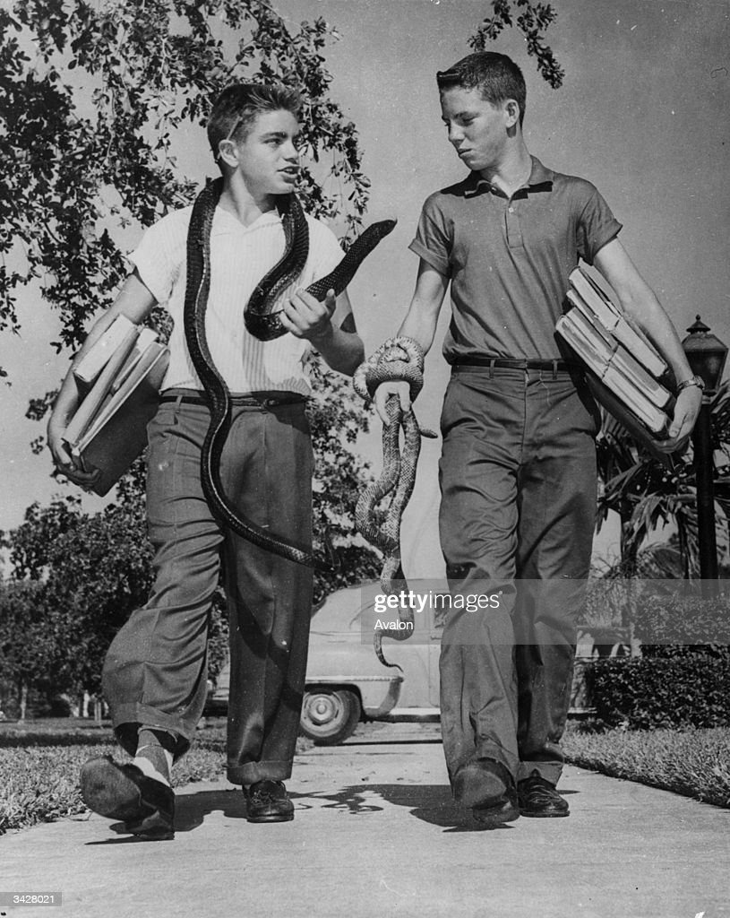 Raymond 'Butch' Freed and friend Larry Bunnagar on their way to school at Coral Gables, Miami, Florida, with their pet snakes. Butch has been collecting snakes for five years from the Everglades.