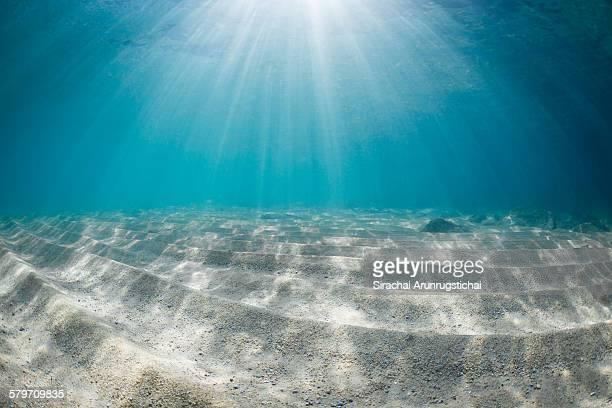 Rays of light on sandy sea floor