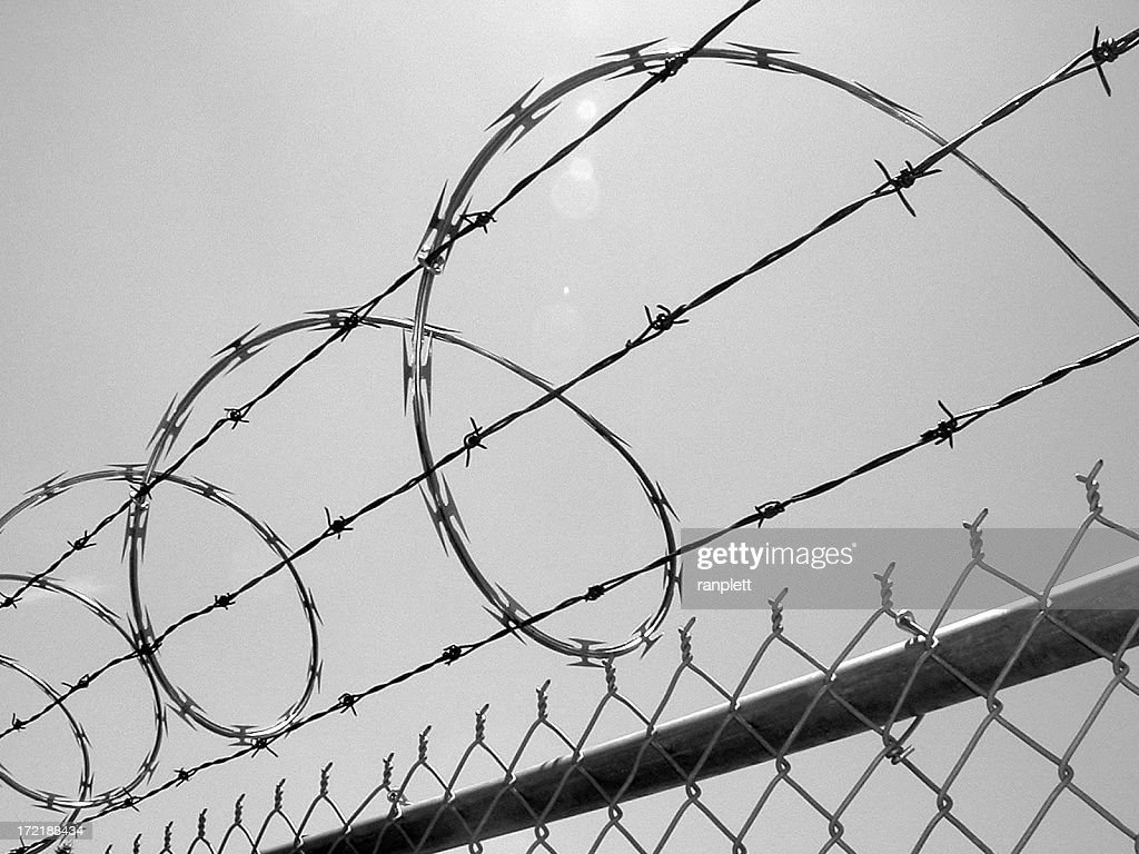 Razor Wire Above a Fence
