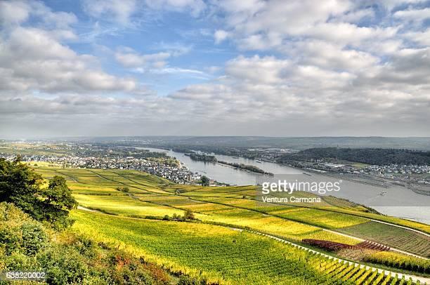 Rüdesheim am Rhein - Germany.