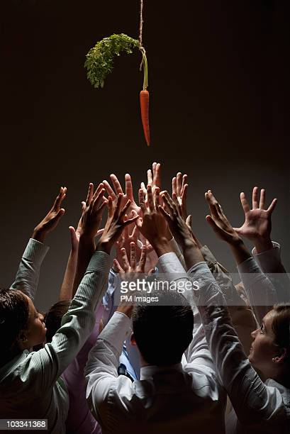Reaching for a carrot on a string