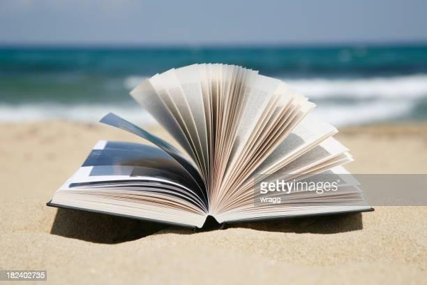 Leggere un libro su una spiaggia di sabbia