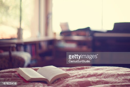 Reading in Bed : Stock Photo