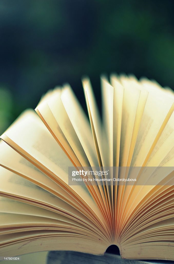 Reading outside in summer : Stock Photo