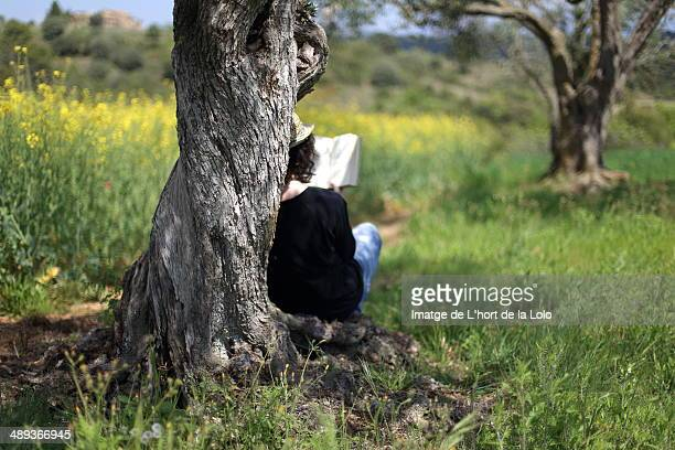 Reading under a tree