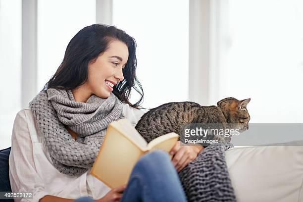 Prêt pour une histoire kitty chat ?