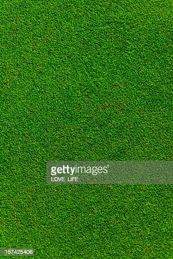 A real putting green of a golf course