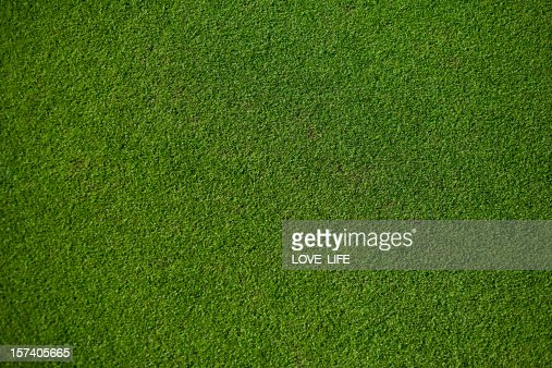 Real Putting Green