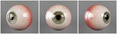 Realistic human eyeballs brown iris pupil in three different sides