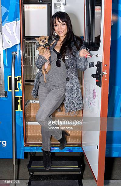 Reality Star Mayte Garcia hosts pet adoption in conjunction with her foundation 'Mayte's Rescue' at The Beverly Hills Mutt Club on February 13 2013...