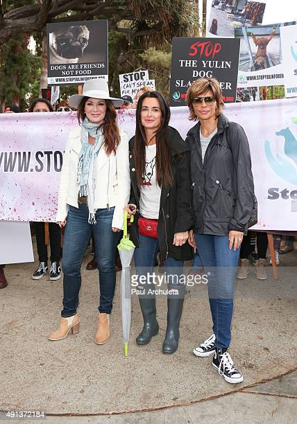 Reality TV Personalities Lisa Vanderpump Kyle Richards and Lisa Rinna attend the stop YulinForever march to end dog cruelty In Yulin China at...