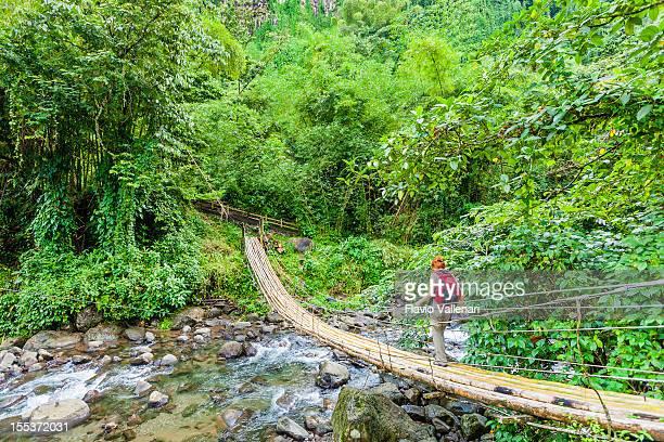 Ponte de bambu, São Vicente