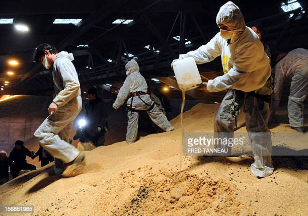 Reaper volunteers pour castor oil on soybeans on November 23 2012 in a warehouse where transgenic soybeans are stored in Lorient harbour western...