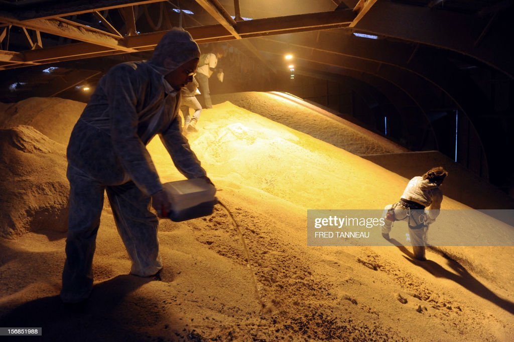 Reaper volunteers pour castor oil on soybeans on November 23, 2012 in a warehouse where transgenic soybeans are stored in Lorient harbour, western France, during a demonstration to denounce the presence of this 'toxic' product in the food chain. AFP PHOTO / FRED TANNEAU