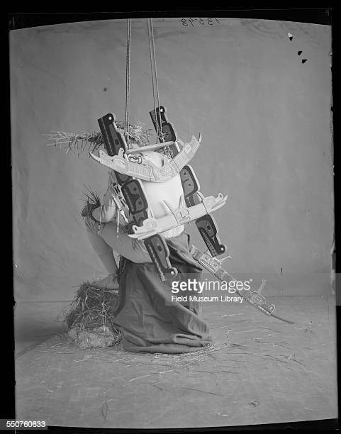 Rear view of a First Nations Kwakiutl Warrior dancer with hoisting frame attached to body at the Louisiana Purchase Exposition St Louis Missouri June...