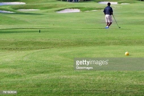 Rear view of a man playing golf in a golf course : Foto de stock