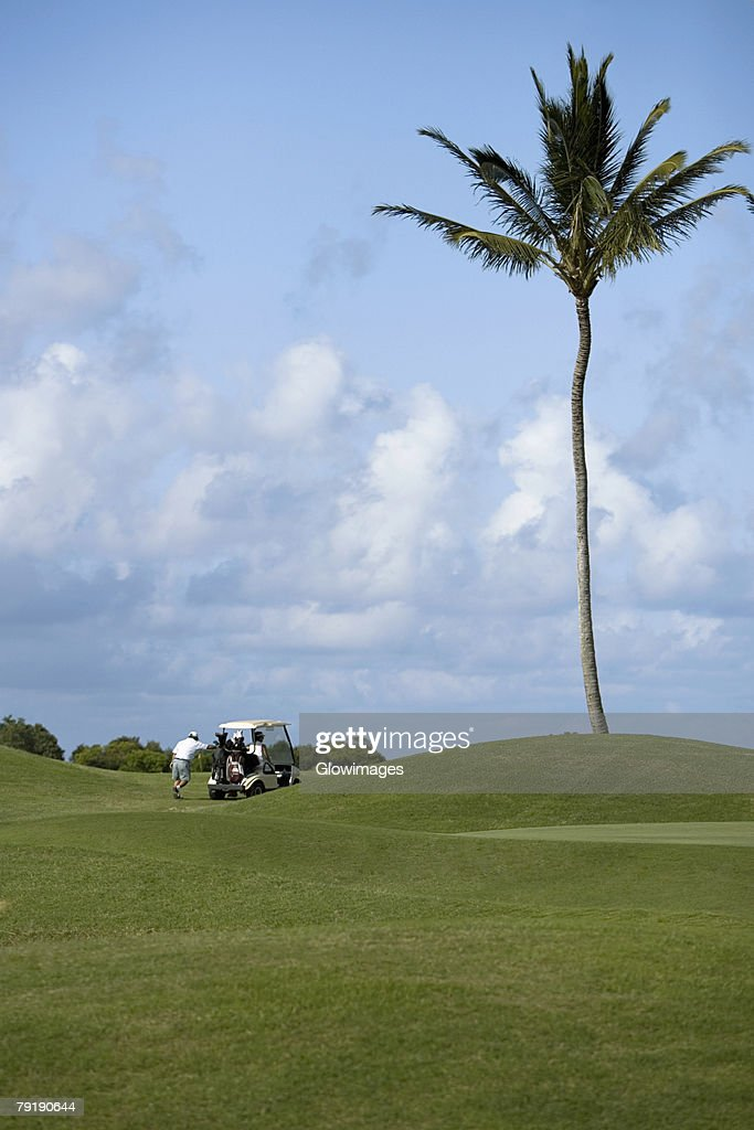 Rear view of a man pushing a golf cart in a golf course, Kauai, Hawaii Islands, USA : Foto de stock