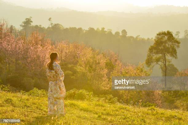 Rear view of a Woman in traditional Japanese clothing in a cherry blossom orchard, Japan