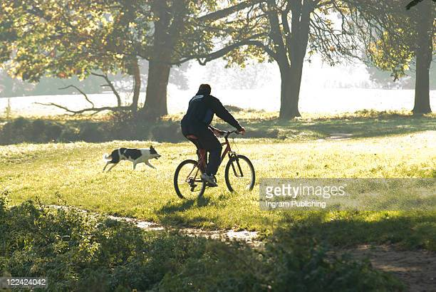 Rear view of a young man riding a bicycle in a park