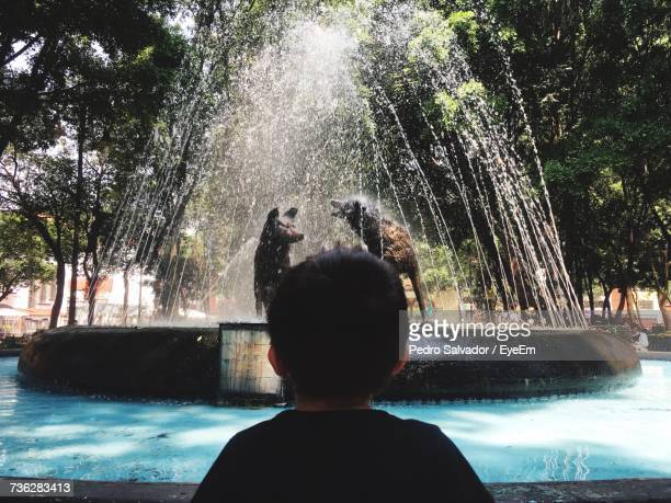 Rear View Of Boy Looking At Fountain