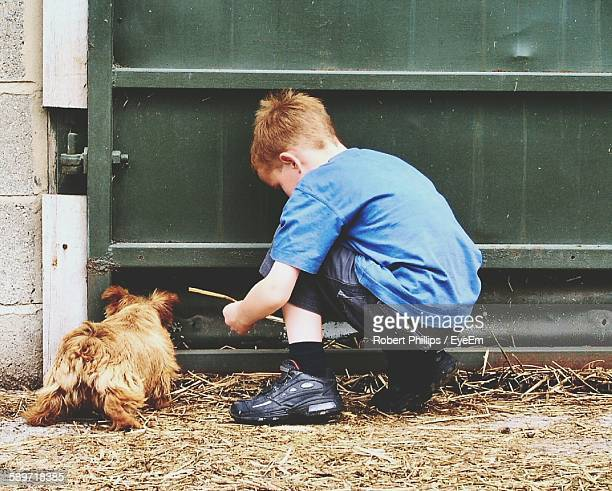 Rear View Of Boy Playing With Dog Against Metallic Door