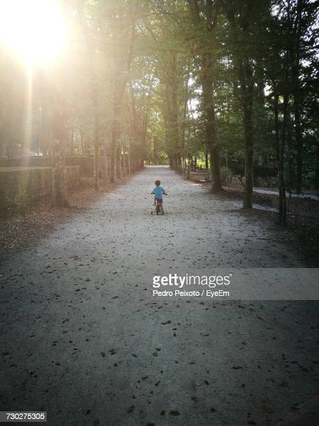 Rear View Of Boy Riding Bicycle On Footpath Amidst Trees At Park