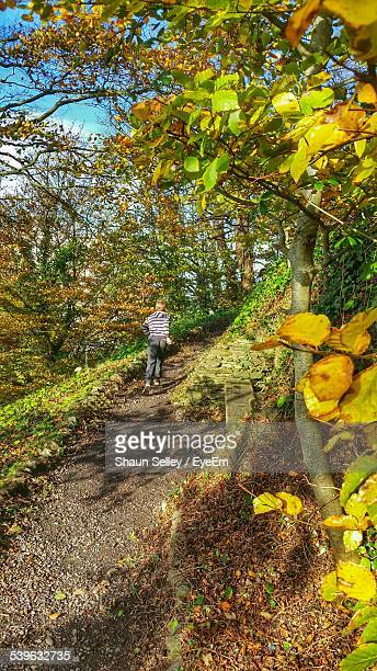 Rear View Of Boy Running On Trail In Forest During Autumn